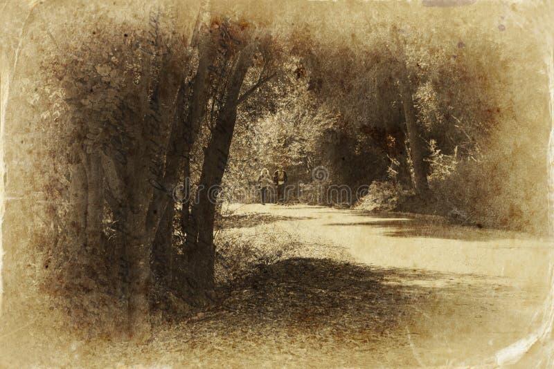 Pary odprowadzenie na drodze w ciemnej lasowej czarny i biały fotografii zdjęcia stock
