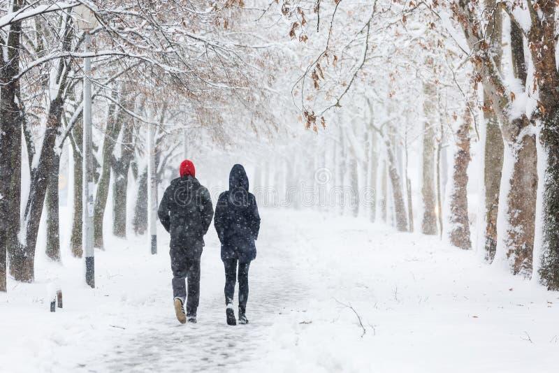 Pary odprowadzenie podczas ciężkiego śnieżycy zdjęcie stock