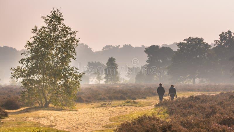 Pary odprowadzenie wzdłuż ścieżki przez heathland obraz stock