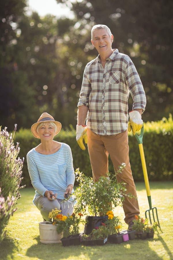 pary ogrodnictwa senior wpólnie zdjęcia stock