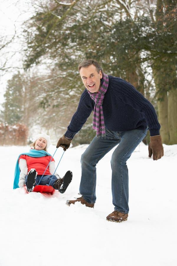 pary starszej sanny śnieżny las fotografia royalty free