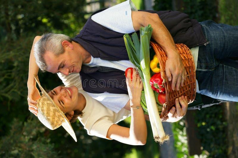 pary warzywo ogrodowy szczęśliwy obraz stock