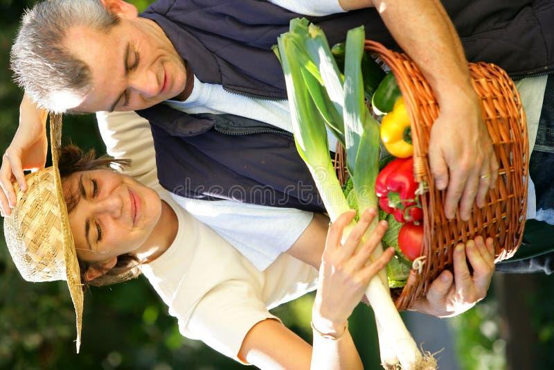 pary warzywo ogrodowy szczęśliwy fotografia royalty free