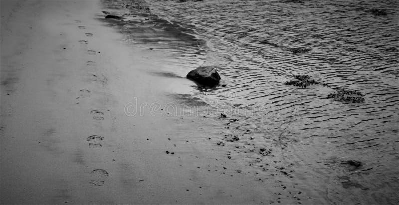 Pas noirs et blancs sur la plage photo stock