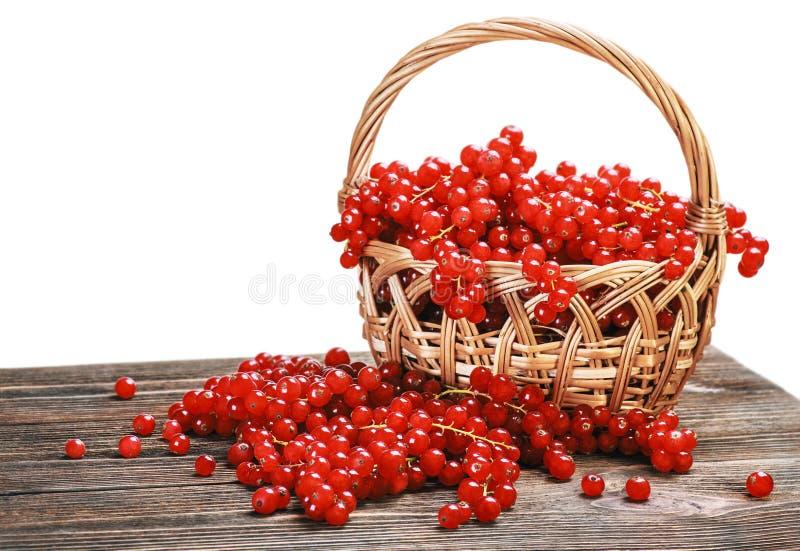 Pasa roja de las bayas frescas en una cesta aislada fotografía de archivo