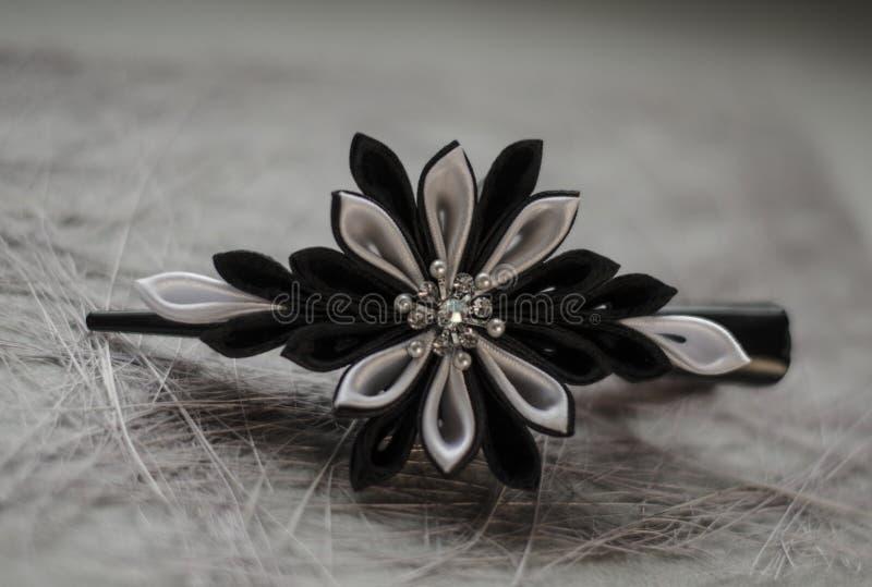 Pasador Negro-blanco fotografía de archivo