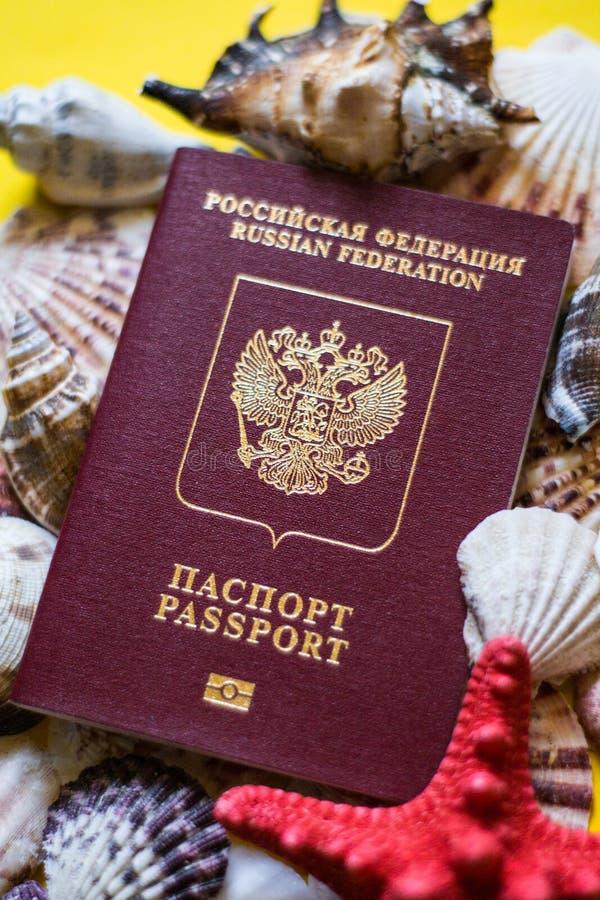 Pasaporte ruso con las conchas marinas del differernt en fondo amarillo imagenes de archivo