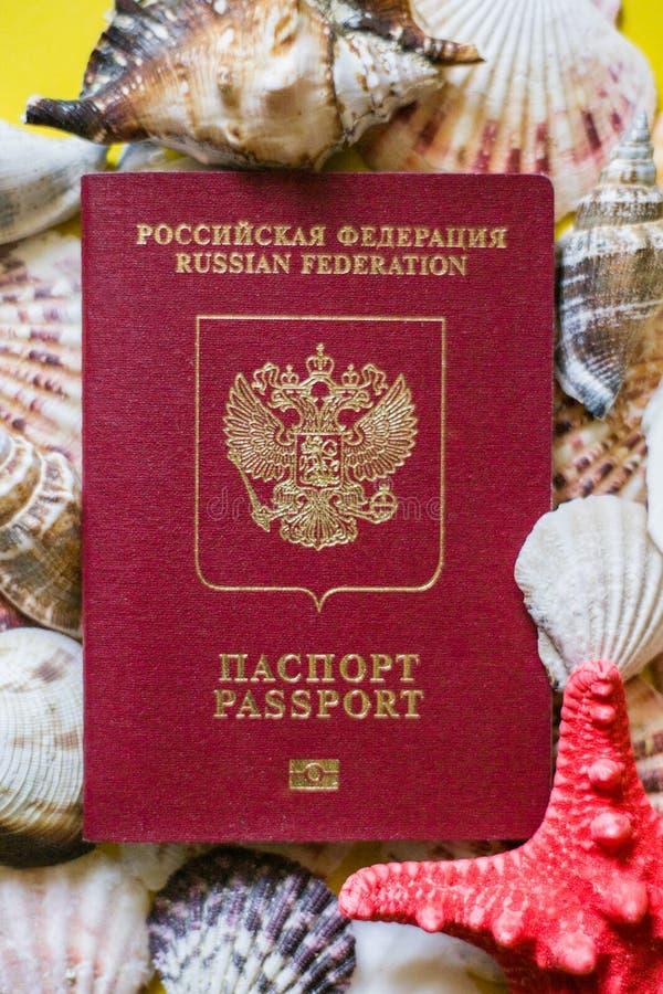 Pasaporte ruso con las conchas marinas del differernt en fondo amarillo fotografía de archivo