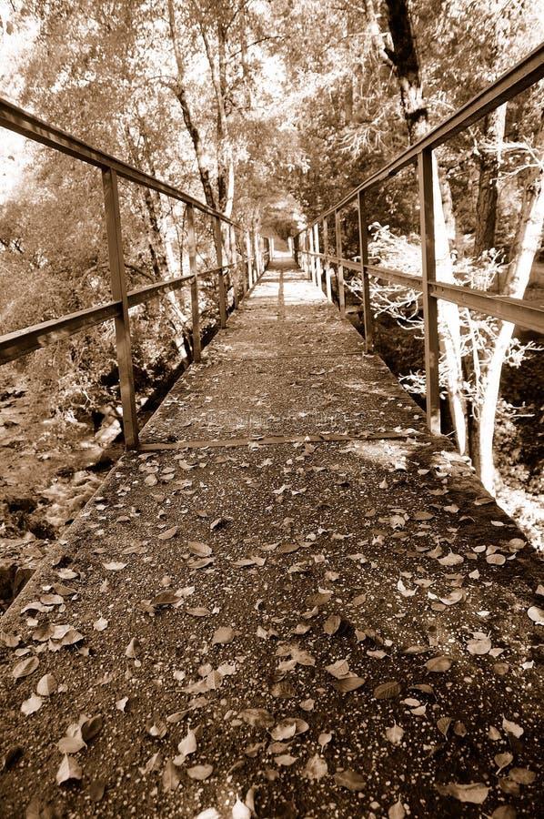 Download Pasarela Del Otoño De La Vendimia Imagen de archivo - Imagen de contraste, parque: 7150895