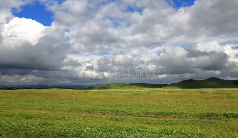 Pascoli in Mongolia Interna Cina fotografie stock