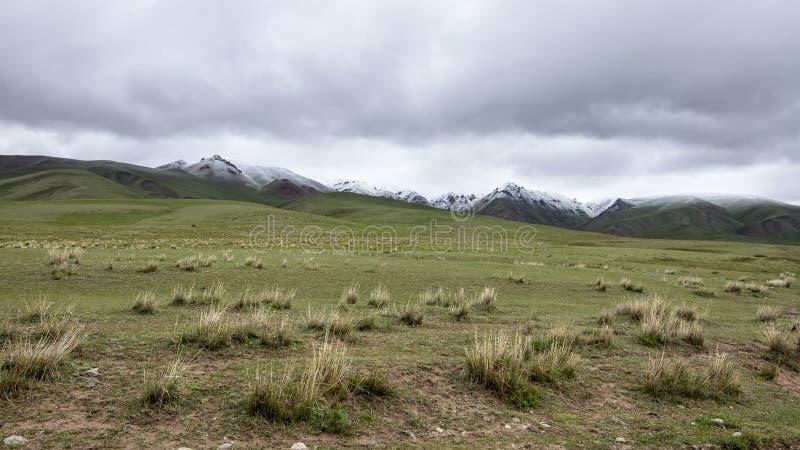 Pascolo con i picchi di montagna innevati sull'orizzonte contro un cielo nuvoloso Viaggio Kirghizistan fotografia stock libera da diritti