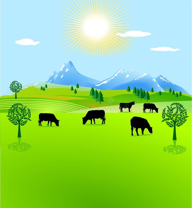 Pascolo della montagna del recinto chiuso della mucca illustrazione di stock