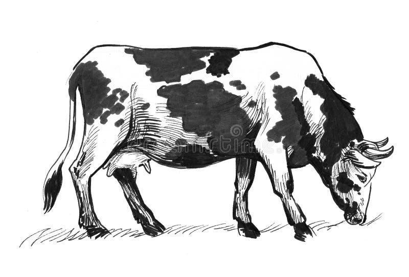Pascolo della mucca illustrazione di stock