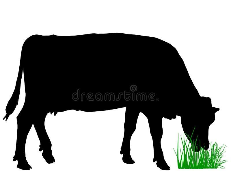 Pascolo della mucca illustrazione vettoriale