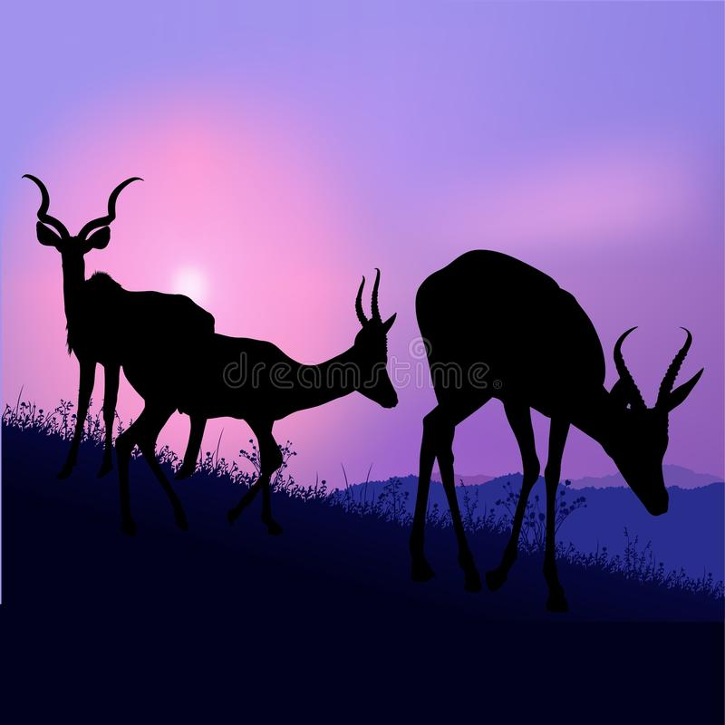 Pascolo delle antilopi illustrazione vettoriale