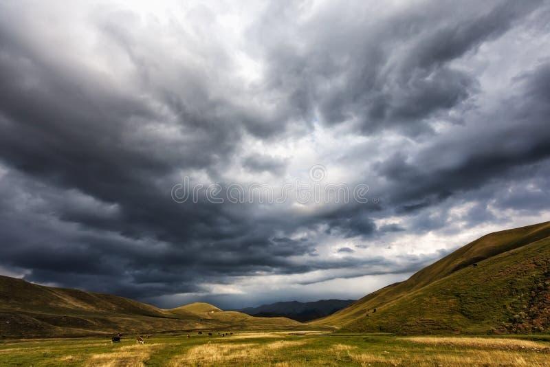 Pascolo di estate nella valle intermontana Nuvole di pioggia fotografia stock libera da diritti