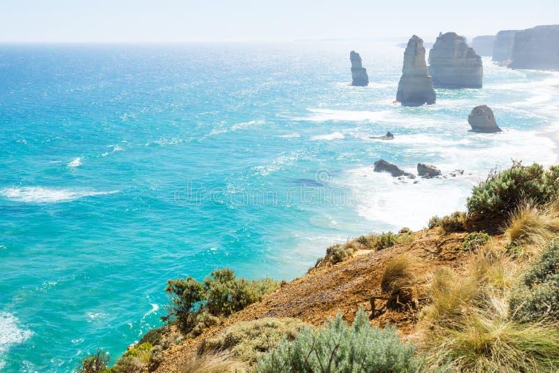 Pascolo e cespugli ai dodici Apostels alla grande strada dell'oceano, Victoria, Australia immagine stock