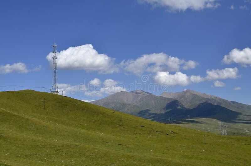 Pascolo e cielo blu fotografia stock libera da diritti