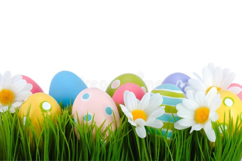 Pascua coloreó los huevos en la hierba. fotos de archivo libres de regalías