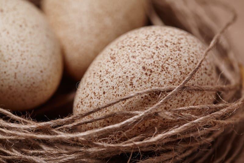 Pascua feliz Fondo con los huevos naturales en la jerarquía fotos de archivo