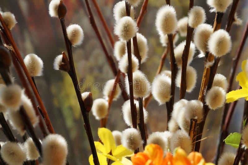 Pasen-boeket met bloemen, wilgenknoppen op de achtergrond royalty-vrije stock foto's