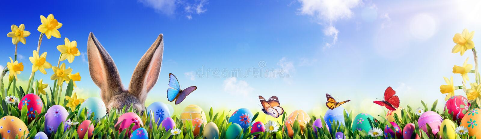 Pasen - Bunny And Decorated Eggs stock foto's