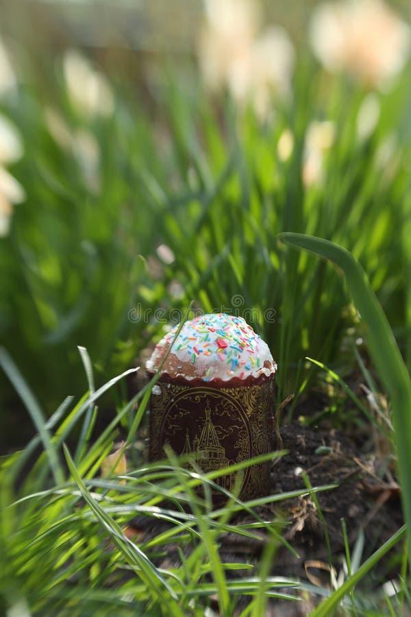 Pasen-cake onder vers de lentegras royalty-vrije stock foto