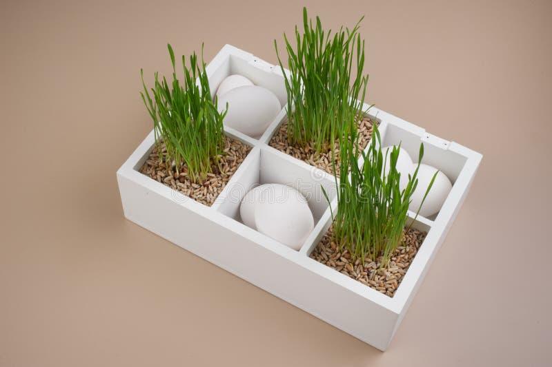 Pasen-de lentedecoratie met gras en witte eieren royalty-vrije stock afbeelding