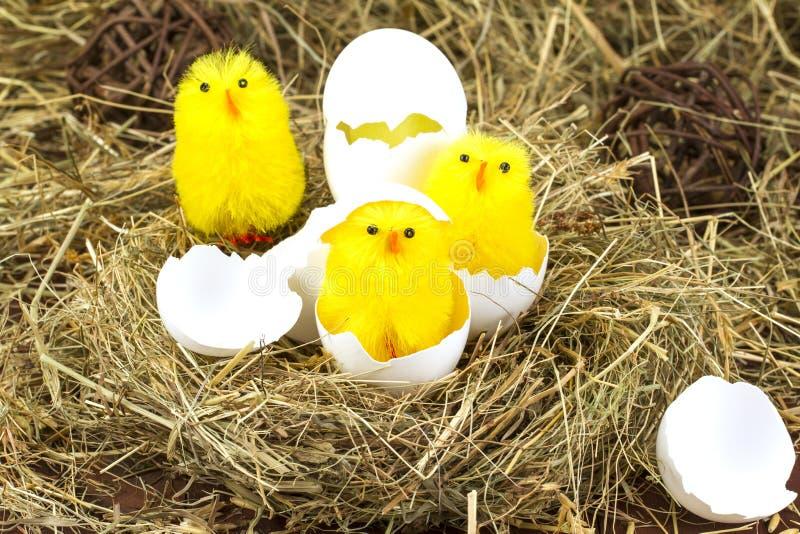 Pasen gekleurde eieren in het hooi Weinig pasgeboren kuiken royalty-vrije stock afbeeldingen
