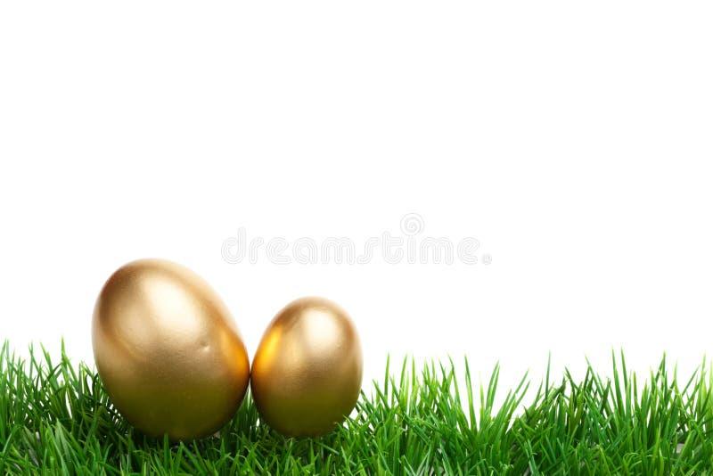Pasen-Grasgrens, gouden die eieren, op wit worden geïsoleerd royalty-vrije stock foto