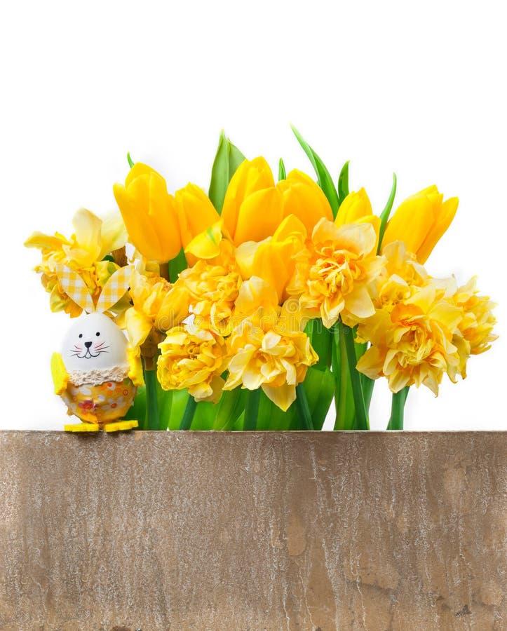 Pasen-kaart, gele narcissen, tulpen royalty-vrije stock afbeelding