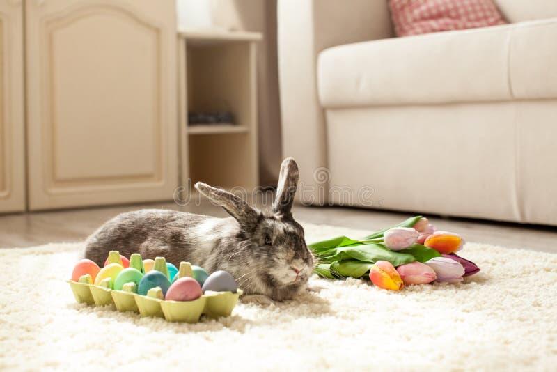 Pasen-konijn in de ruimte stock foto's