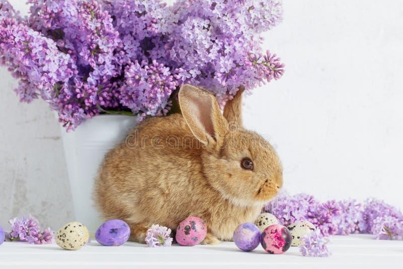 Pasen-konijn met sering in vaas royalty-vrije stock foto