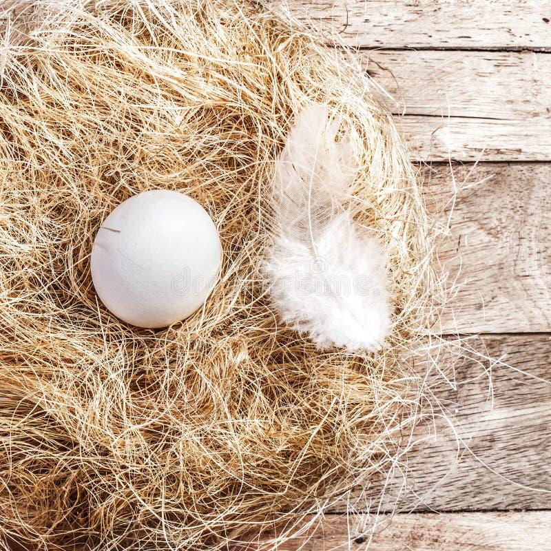 Pasen-nest met Wit Ei en veer op houten achtergrond met stock foto's