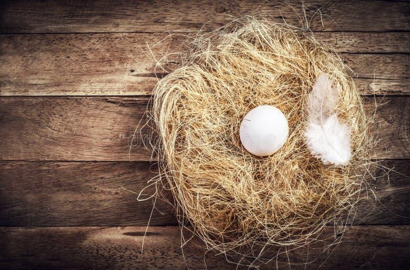 Pasen-nest met Wit Ei en veer op houten achtergrond met stock afbeeldingen
