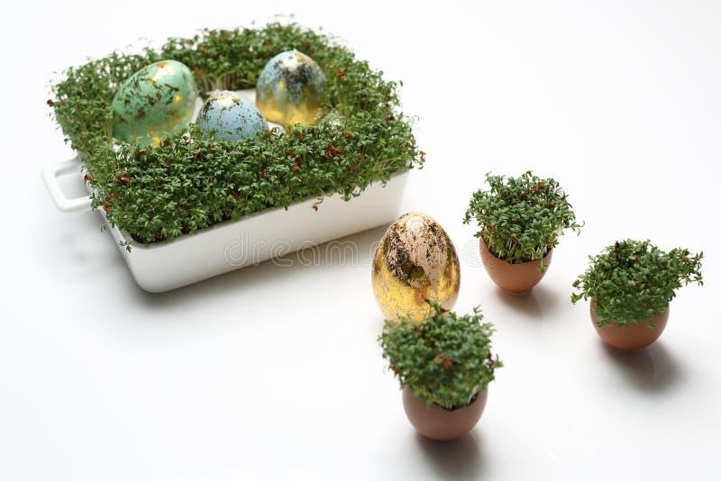 Pasen-samenstelling met eieren en shells Ecologische stijl stock afbeelding