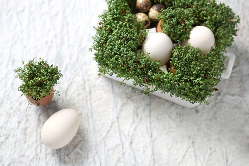 Pasen-samenstelling met eieren en shells, hoogste mening Ecologische stijl royalty-vrije stock fotografie