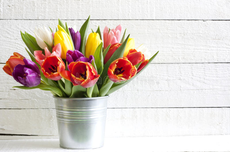 Pasen van de lente tulpen in emmer royalty-vrije stock fotografie