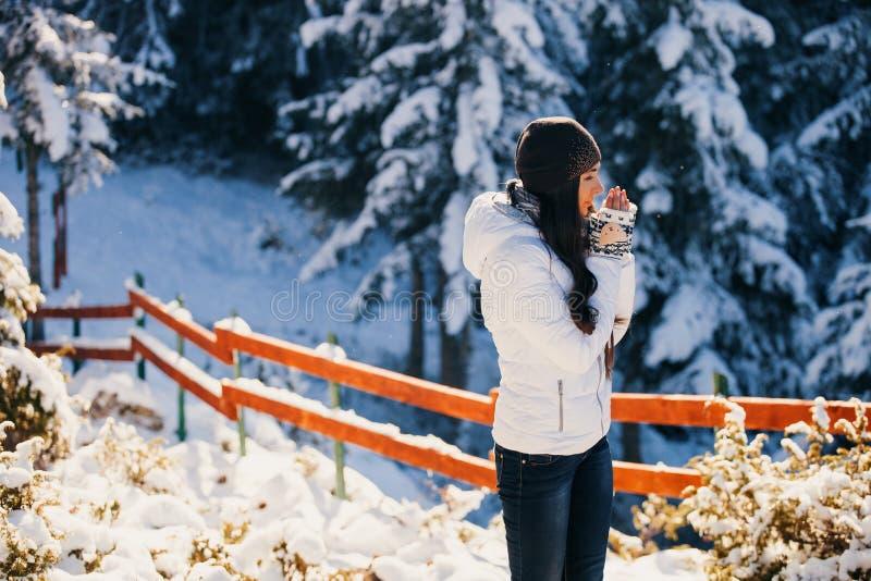 Paseo atractivo de la mujer en bosque nevoso fotografía de archivo libre de regalías