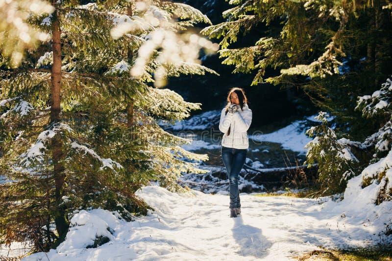 Paseo atractivo de la mujer en bosque nevoso fotografía de archivo
