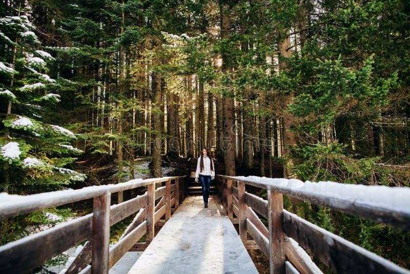 Paseo atractivo de la mujer en bosque nevoso imágenes de archivo libres de regalías