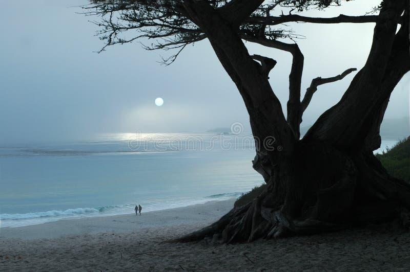 Paseo brumoso de la puesta del sol imagenes de archivo