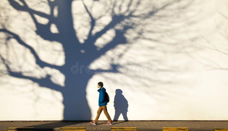 Paseo de la ciudad del invierno imagen de archivo libre de regalías