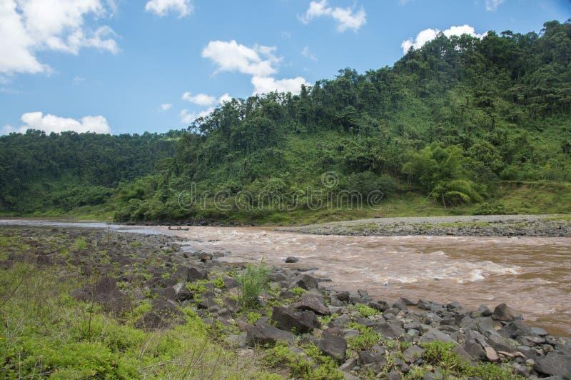Paseo de la lancha a través de la selva tropical del Fijian foto de archivo libre de regalías