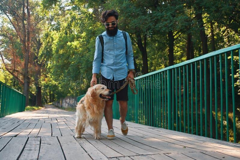 Paseo de la mañana con el perro fotografía de archivo