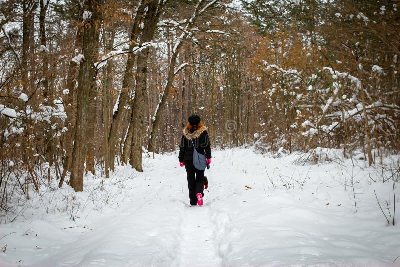 Paseo de la muchacha con el perro a través del bosque en un invierno imagen de archivo