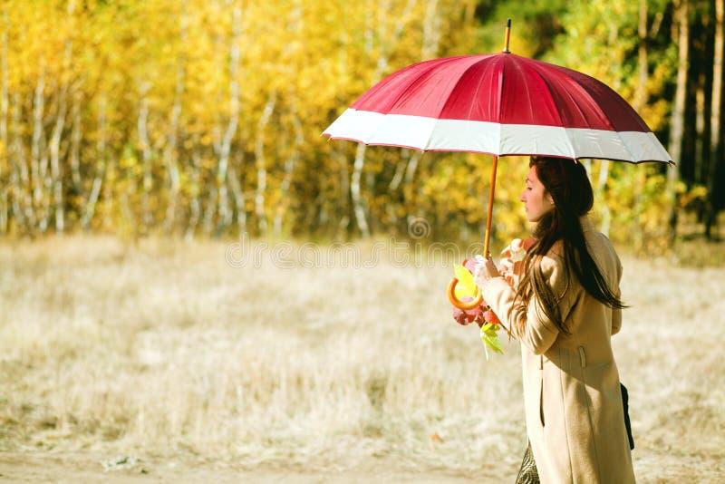 Paseo de la mujer en bosque del otoño foto de archivo libre de regalías