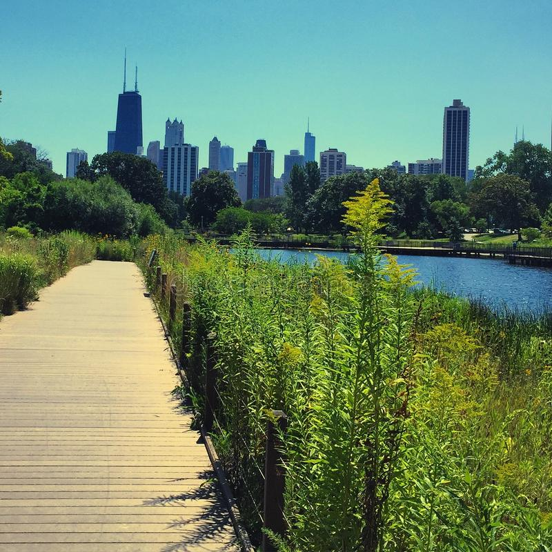 Paseo de la naturaleza en Lincoln Park de Chicago imagen de archivo