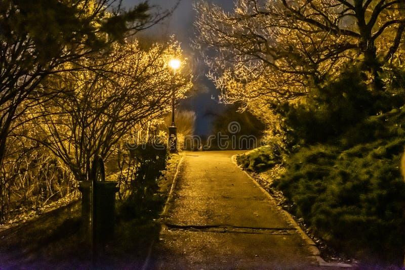 Paseo de la noche en el parque de Citadella, Budapest Hungría imágenes de archivo libres de regalías