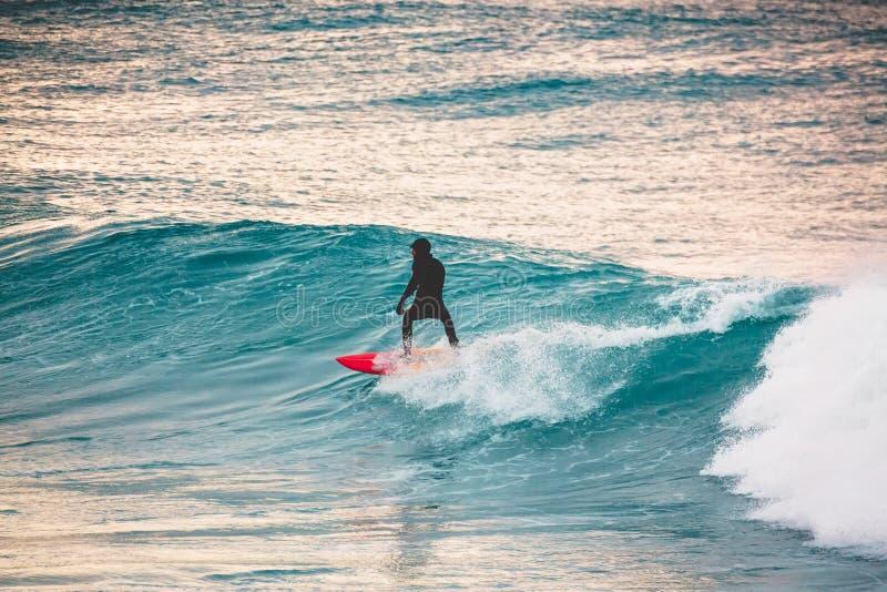 Paseo de la persona que practica surf en la tabla hawaiana roja en onda azul Invierno que practica surf en el océano fotos de archivo